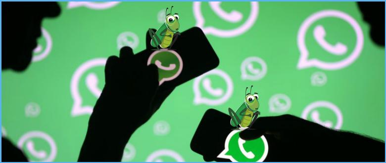 Here's how to Fix this Bug in WhatsApp