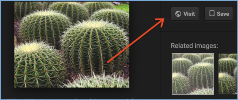 How to Save a Google Image Without the View Image Button on Search Results